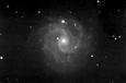 NGC3184 (銀河系外星雲)